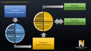 BaseLine Programming Meso Planung
